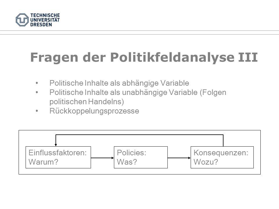 Fragen der Politikfeldanalyse III