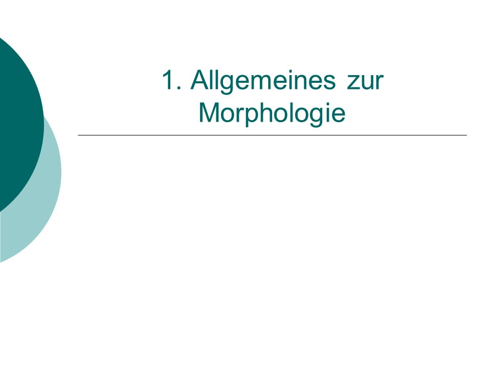 1. Allgemeines zur Morphologie
