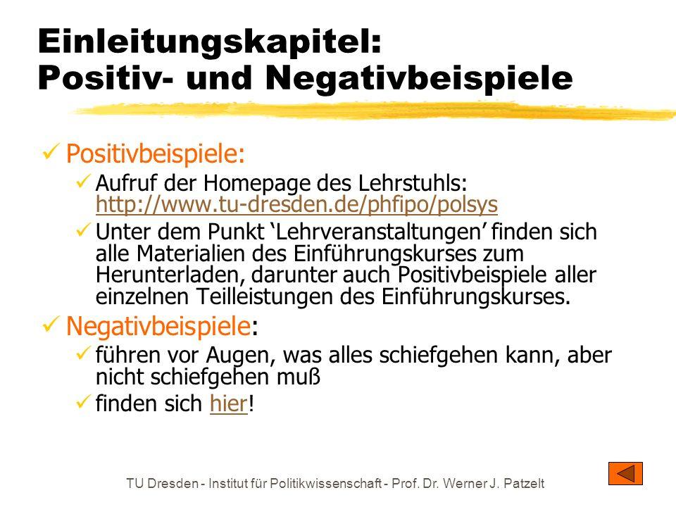 Einleitungskapitel: Positiv- und Negativbeispiele