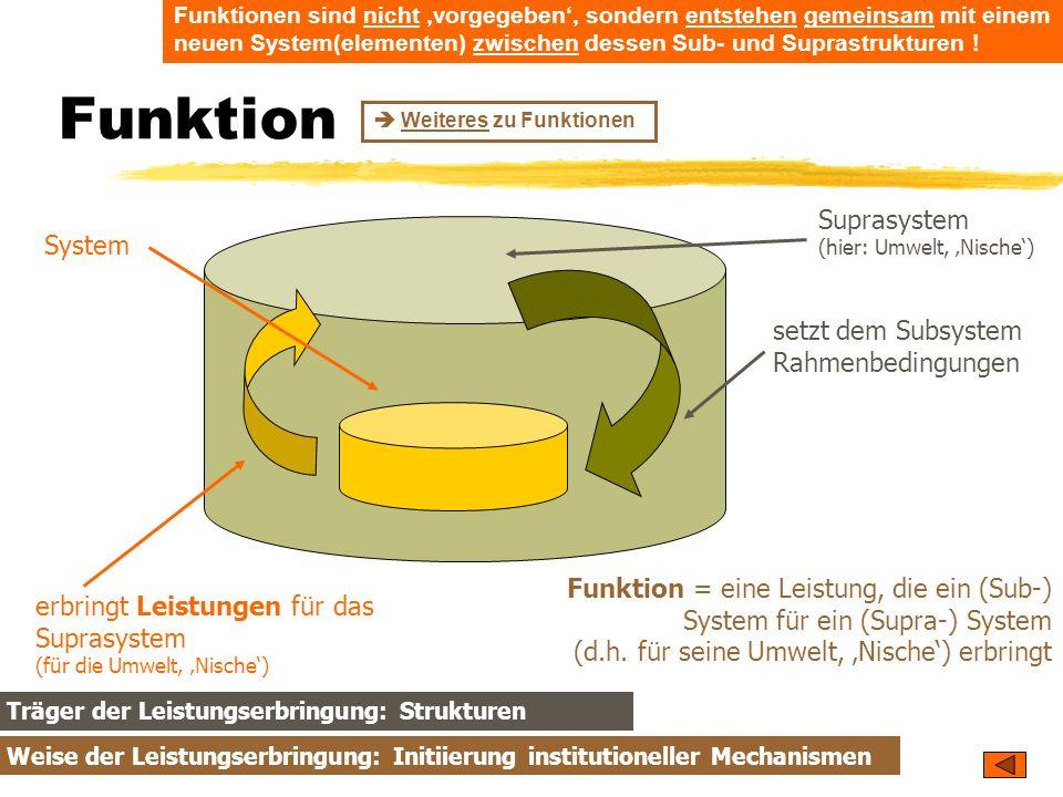 Funktion Suprasystem (hier: Umwelt, 'Nische') System