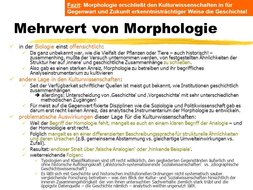 Mehrwert von Morphologie