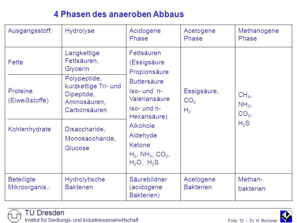 4 Phasen des anaeroben Abbaus