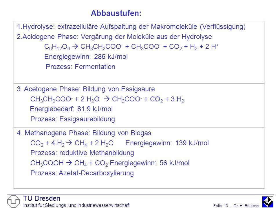 Abbaustufen: Hydrolyse: extrazelluläre Aufspaltung der Makromoleküle (Verflüssigung) Acidogene Phase: Vergärung der Moleküle aus der Hydrolyse.