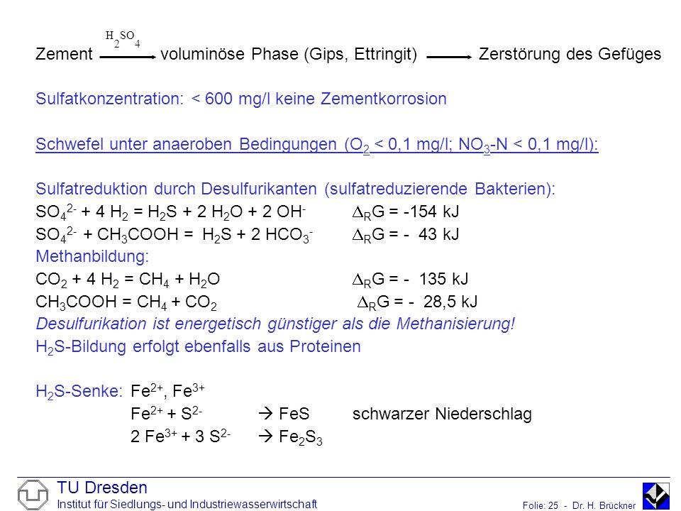 Zement voluminöse Phase (Gips, Ettringit) Zerstörung des Gefüges