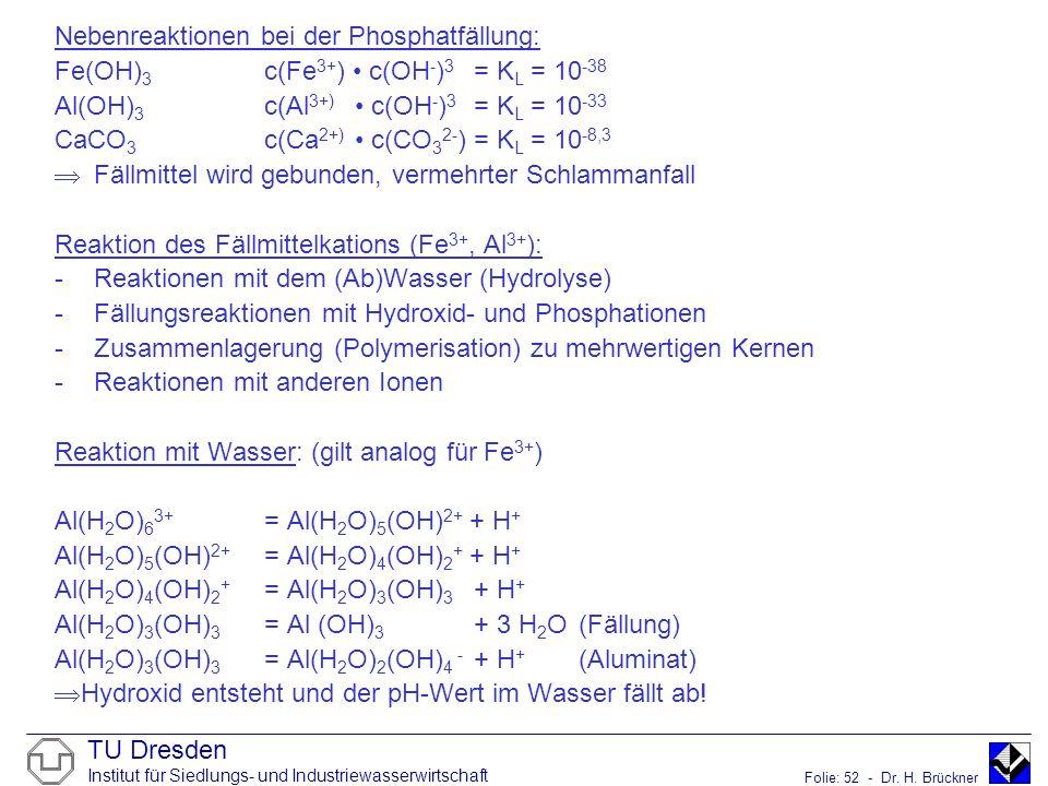 Nebenreaktionen bei der Phosphatfällung: