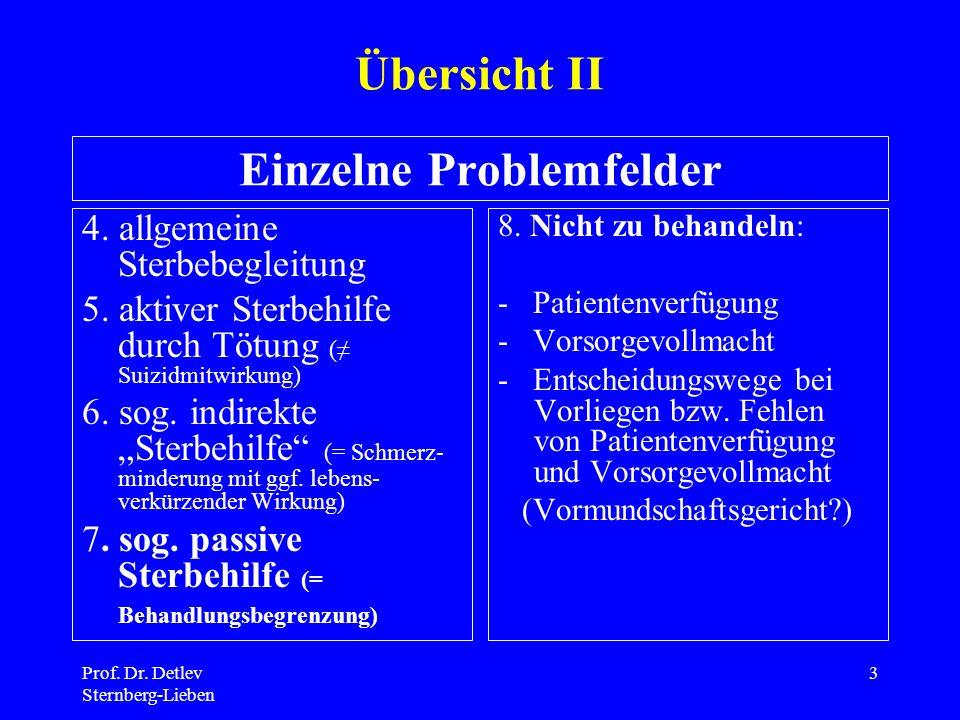 Einzelne Problemfelder