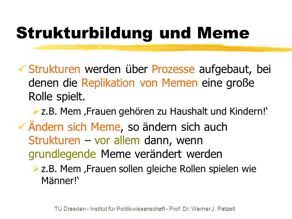 Strukturbildung und Meme