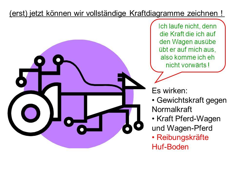 (erst) jetzt können wir vollständige Kraftdiagramme zeichnen !