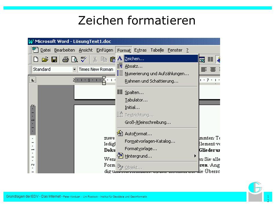 Zeichen formatieren Grundlagen der EDV - Das Internet - Peter Korduan - Uni Rostock - Institut für Geodäsie und Geoinformatik.