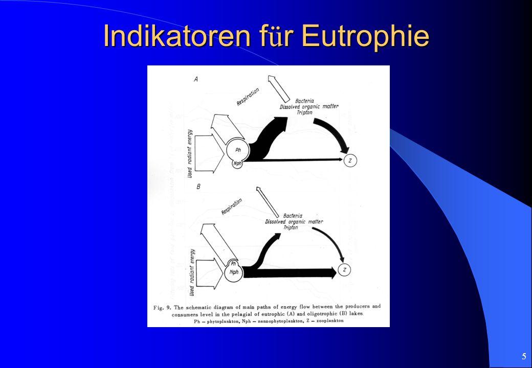 Indikatoren für Eutrophie