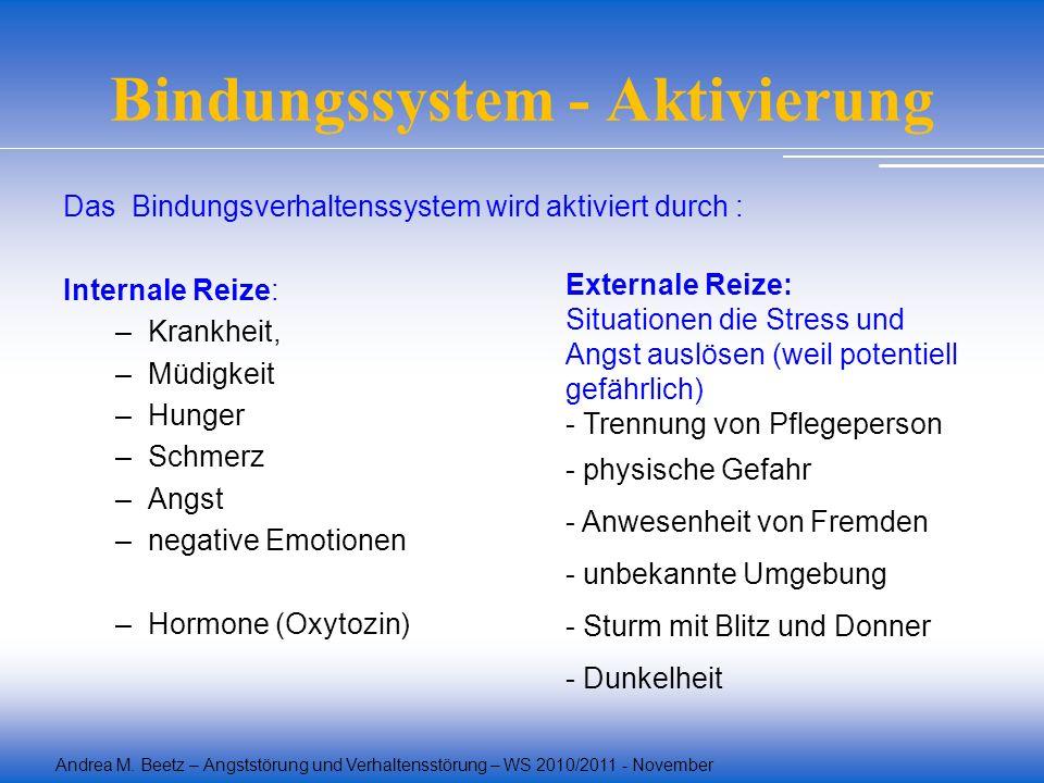 Bindungssystem - Aktivierung