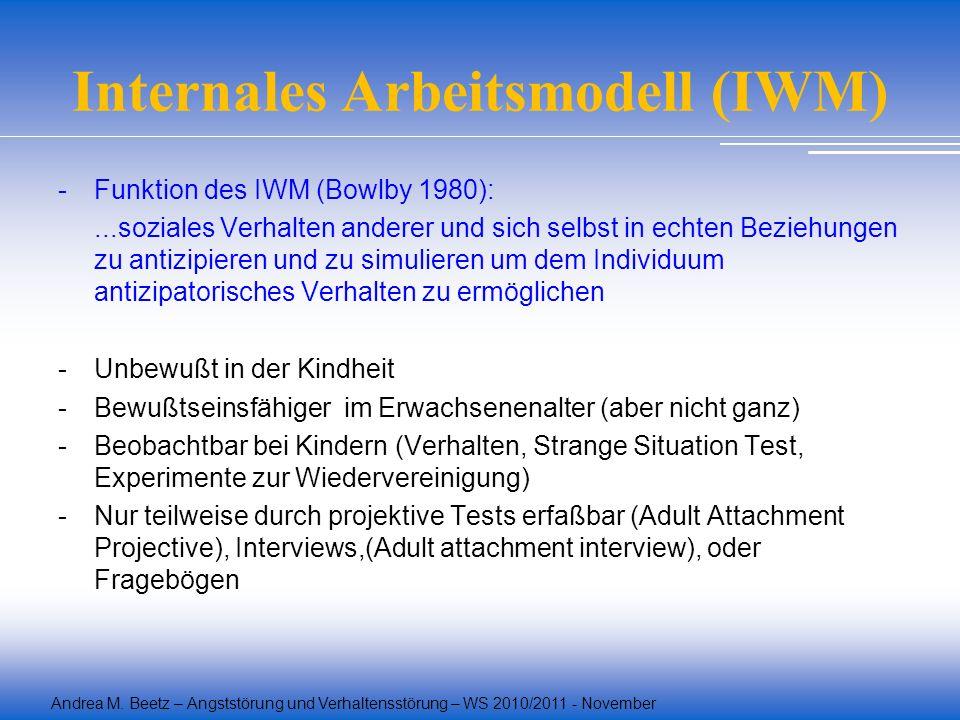 Internales Arbeitsmodell (IWM)