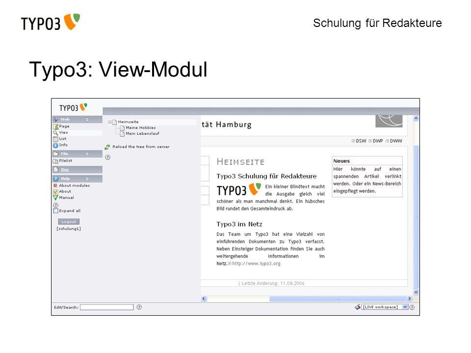 Typo3: View-Modul
