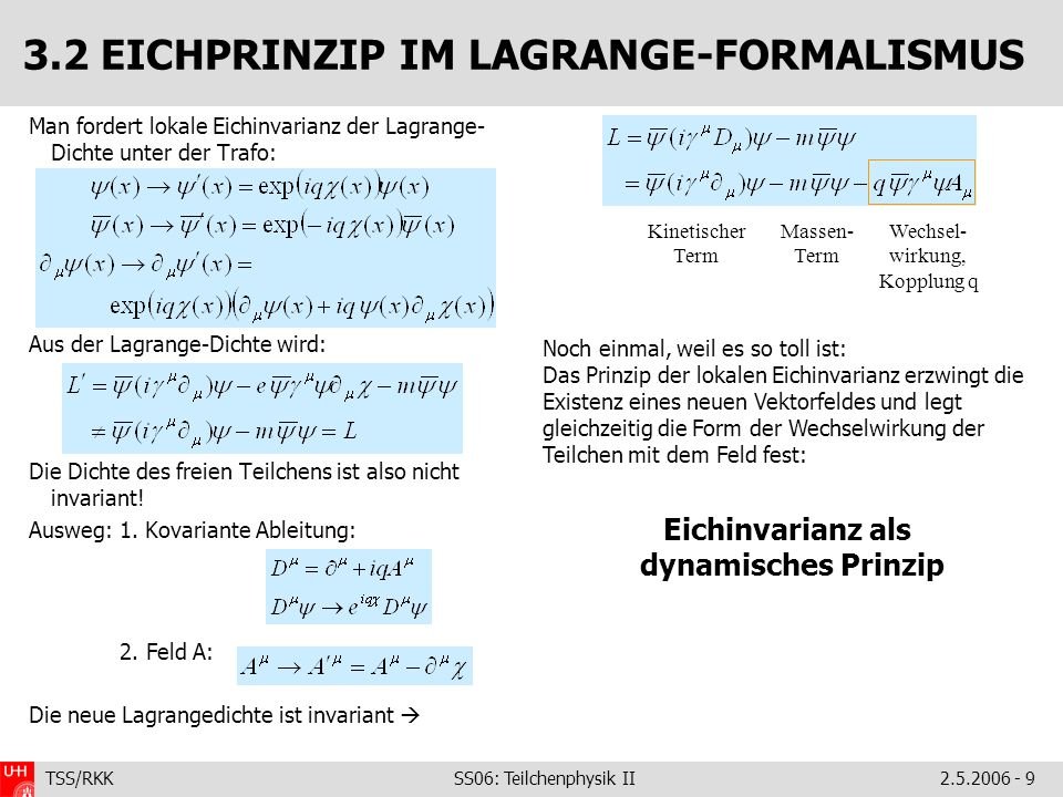 3.2 EICHPRINZIP IM LAGRANGE-FORMALISMUS
