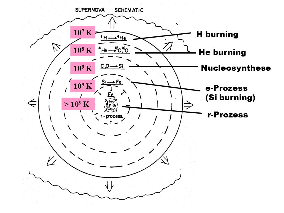 H burning 107 K. He burning. 108 K. Nucleosynthese. 109 K. e-Prozess (Si burning) 109 K. r-Prozess.