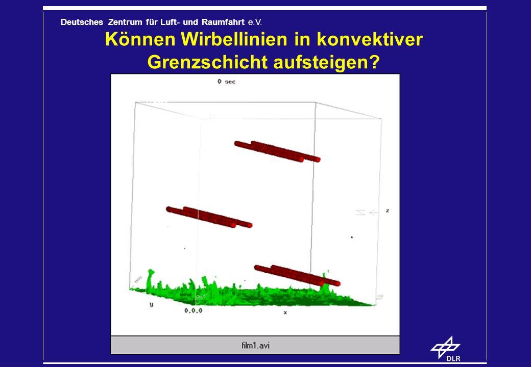 Können Wirbellinien in konvektiver Grenzschicht aufsteigen