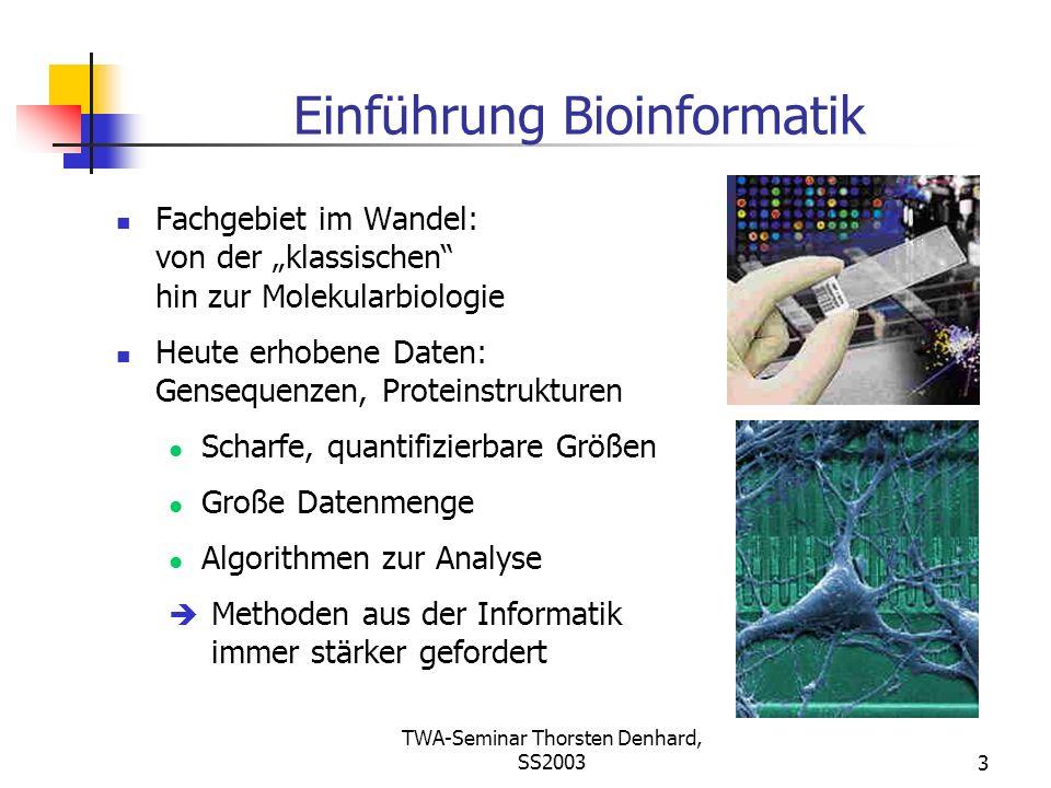 Einführung Bioinformatik