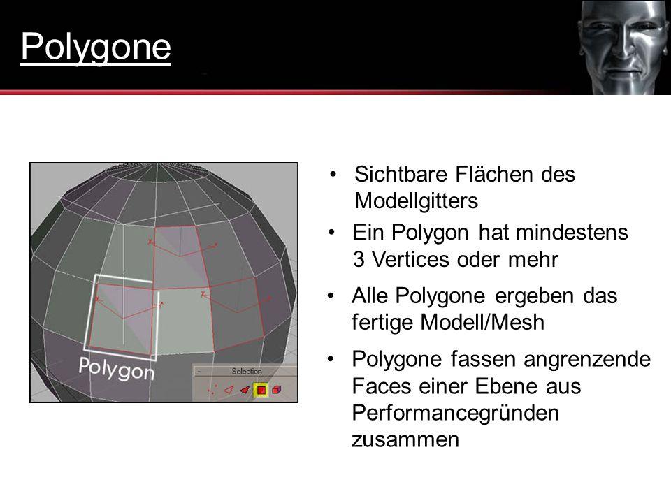 Polygone Sichtbare Flächen des Modellgitters