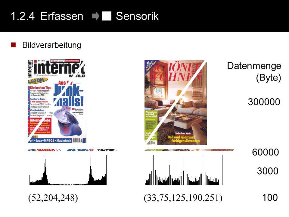 1.2.4 Erfassen Sensorik 300000 Datenmenge (Byte) 60000 (52,204,248)