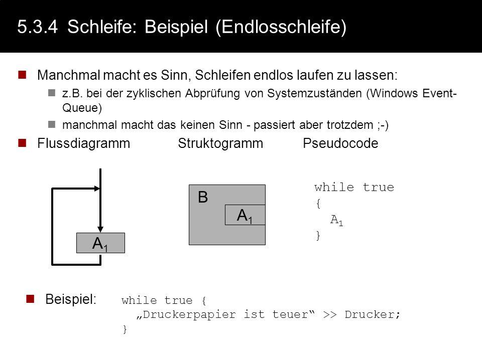 5.3.4 Schleife: Beispiel (Endlosschleife)