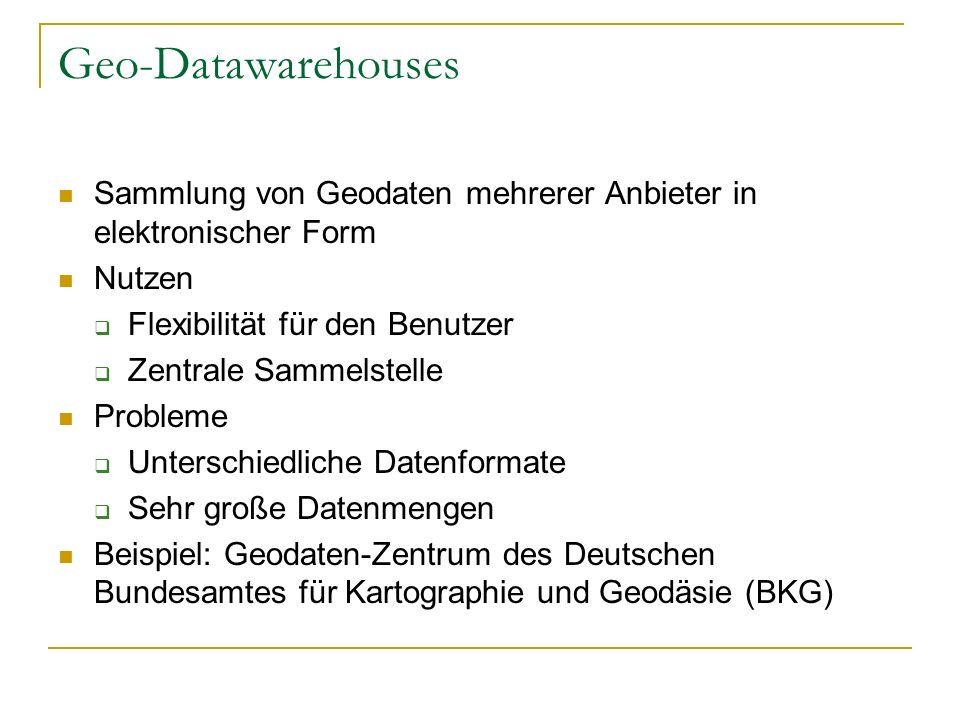 Geo-Datawarehouses Sammlung von Geodaten mehrerer Anbieter in elektronischer Form. Nutzen. Flexibilität für den Benutzer.