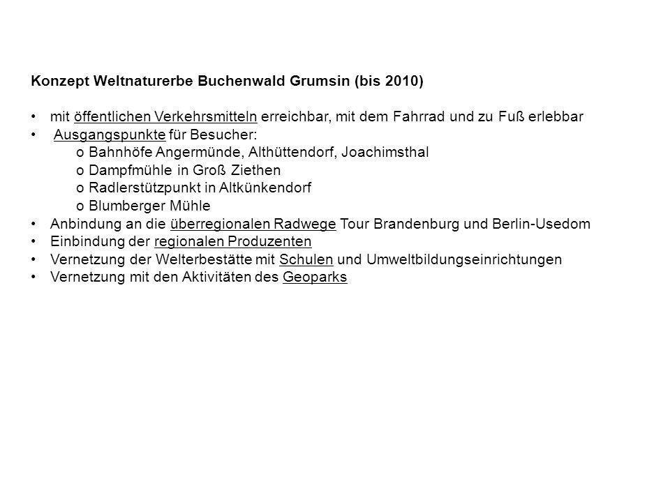 Konzept Weltnaturerbe Buchenwald Grumsin (bis 2010)