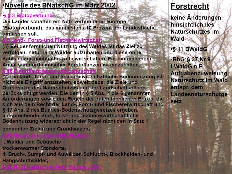 Forstrecht: Novelle des BNatschG im März 2002: