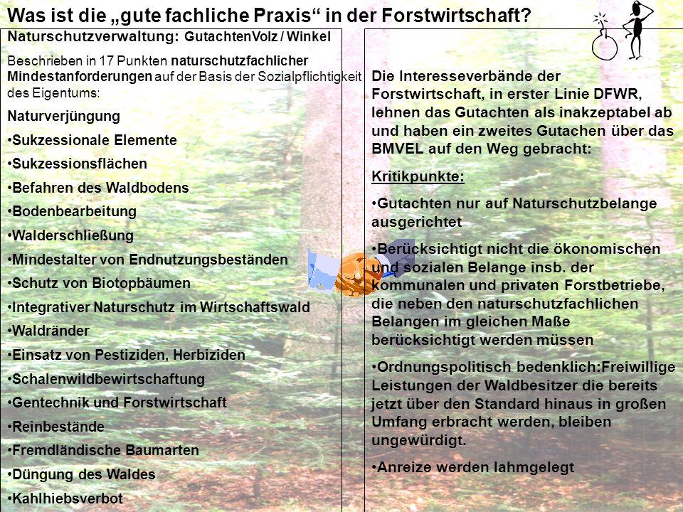 """Was ist die """"gute fachliche Praxis in der Forstwirtschaft"""