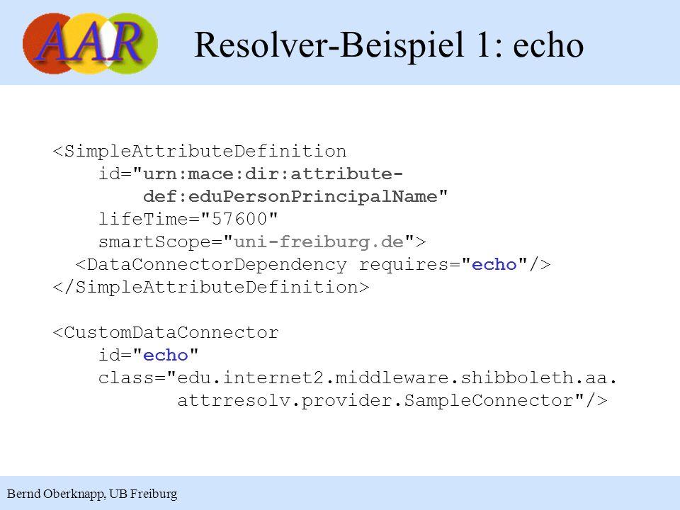 Resolver-Beispiel 1: echo