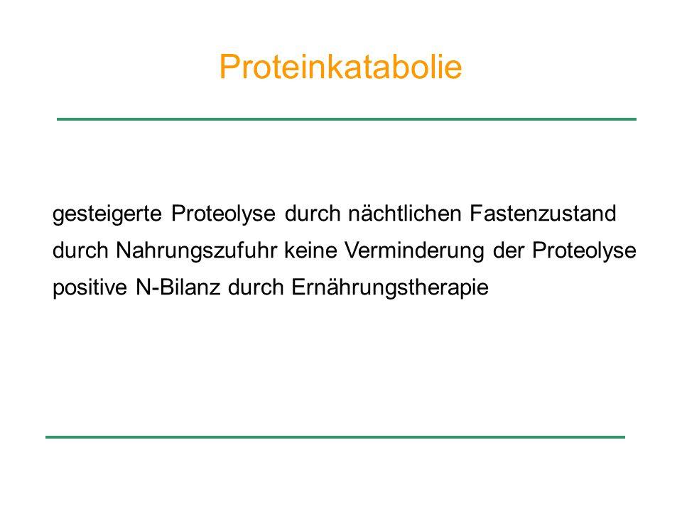 Proteinkatabolie gesteigerte Proteolyse durch nächtlichen Fastenzustand. durch Nahrungszufuhr keine Verminderung der Proteolyse.