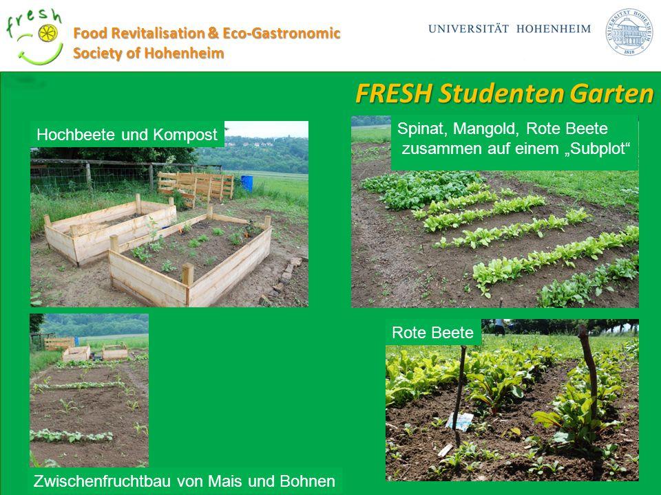 FRESH Studenten Garten