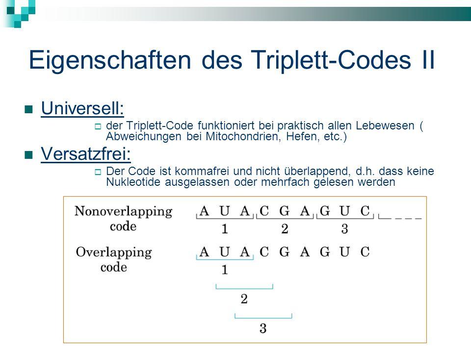 Eigenschaften des Triplett-Codes II
