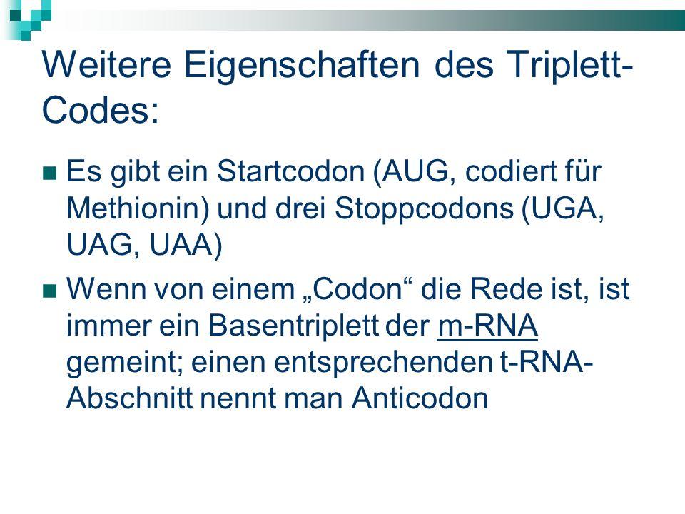 Weitere Eigenschaften des Triplett-Codes:
