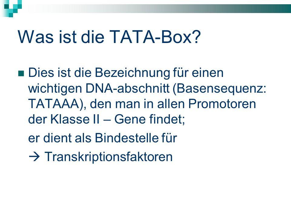 Was ist die TATA-Box