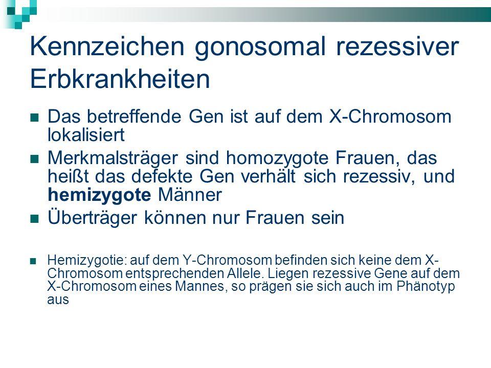 Kennzeichen gonosomal rezessiver Erbkrankheiten
