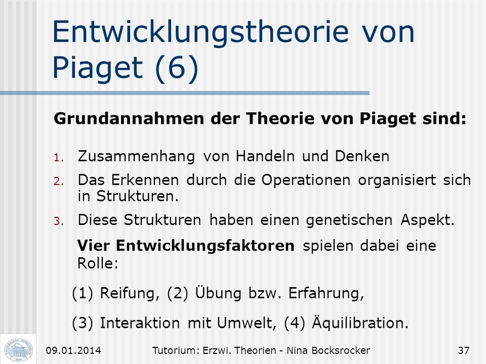 Entwicklungstheorie von Piaget (6)