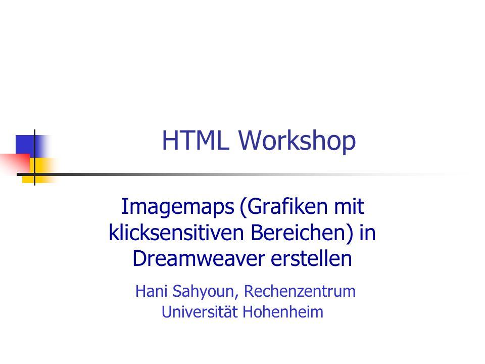 Hani Sahyoun, Rechenzentrum Universität Hohenheim