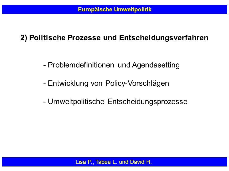 2) Politische Prozesse und Entscheidungsverfahren