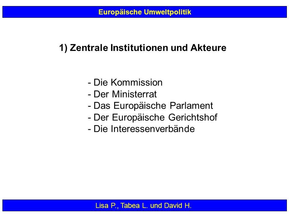 1) Zentrale Institutionen und Akteure