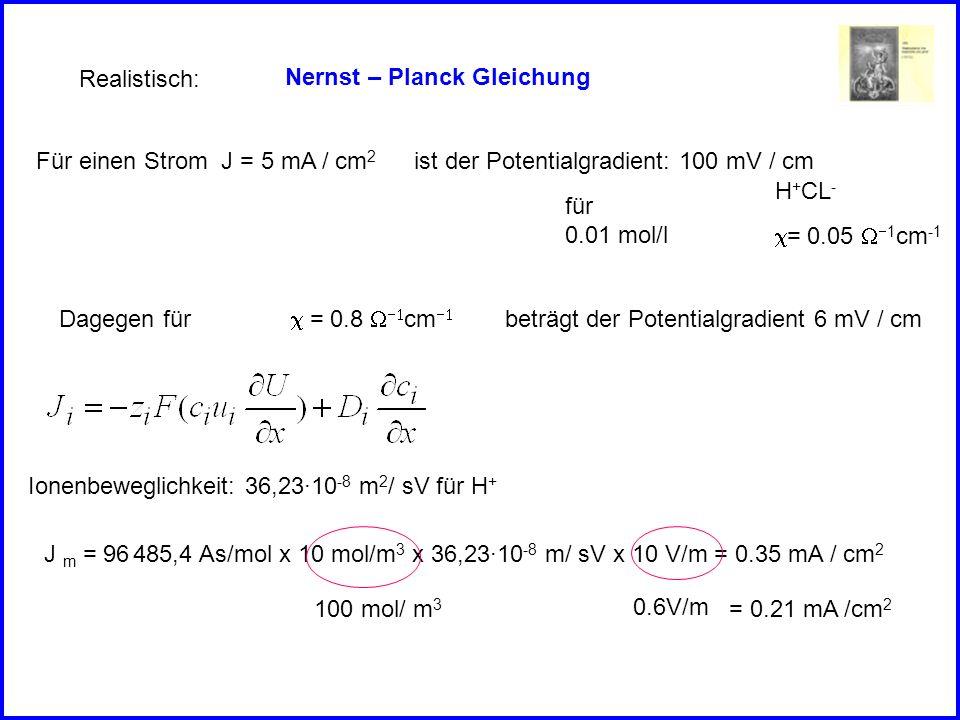 Realistisch: Nernst – Planck Gleichung. Für einen Strom J = 5 mA / cm2. ist der Potentialgradient: 100 mV / cm.