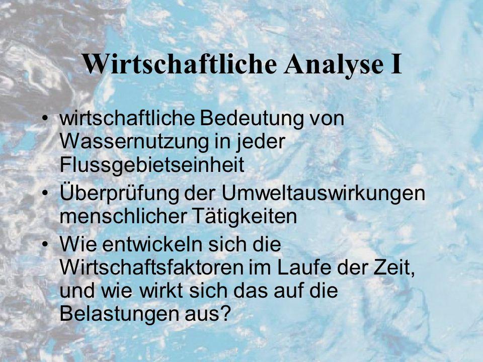 Wirtschaftliche Analyse I