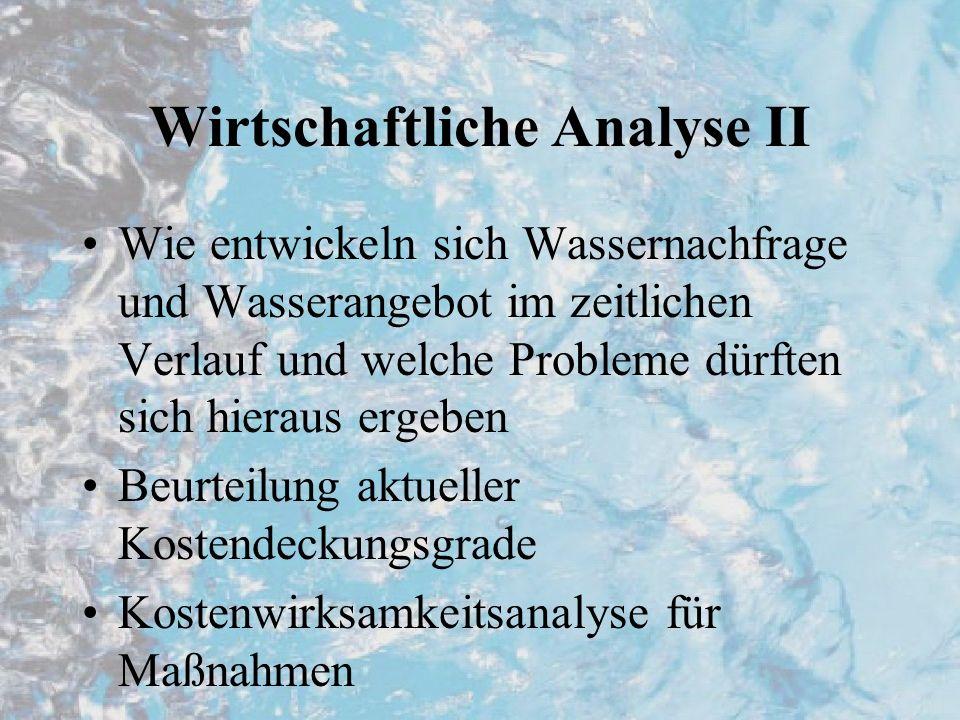 Wirtschaftliche Analyse II