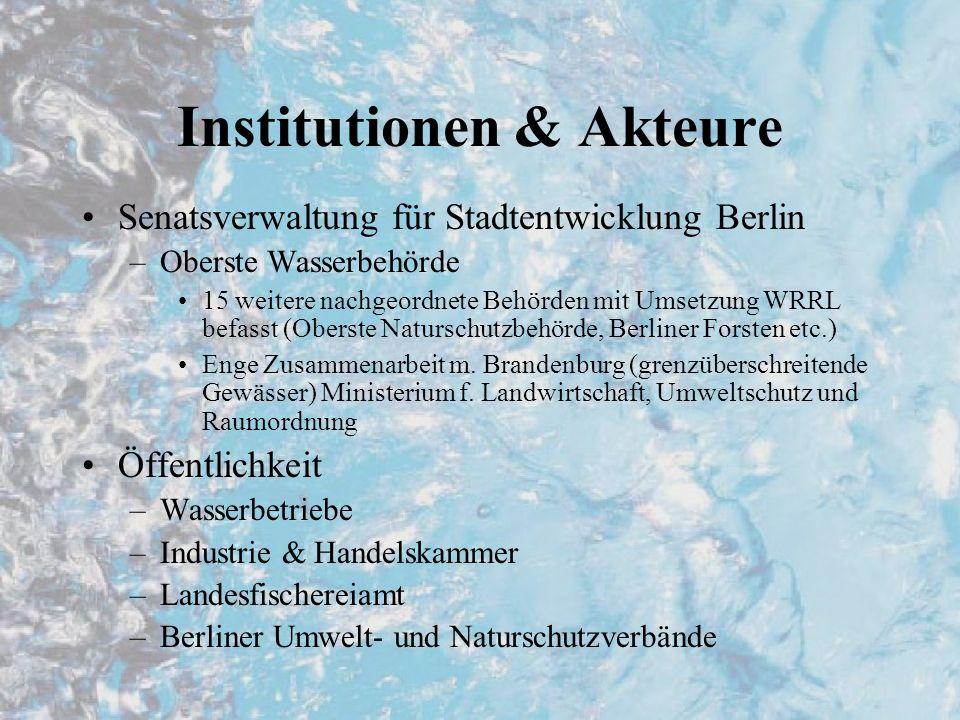 Institutionen & Akteure
