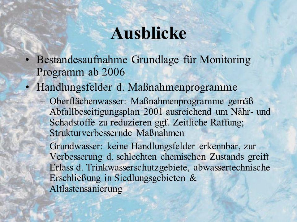 Ausblicke Bestandesaufnahme Grundlage für Monitoring Programm ab 2006