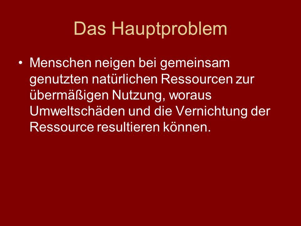 Das Hauptproblem