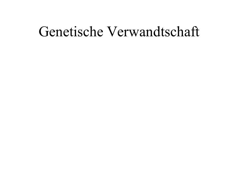Genetische Verwandtschaft