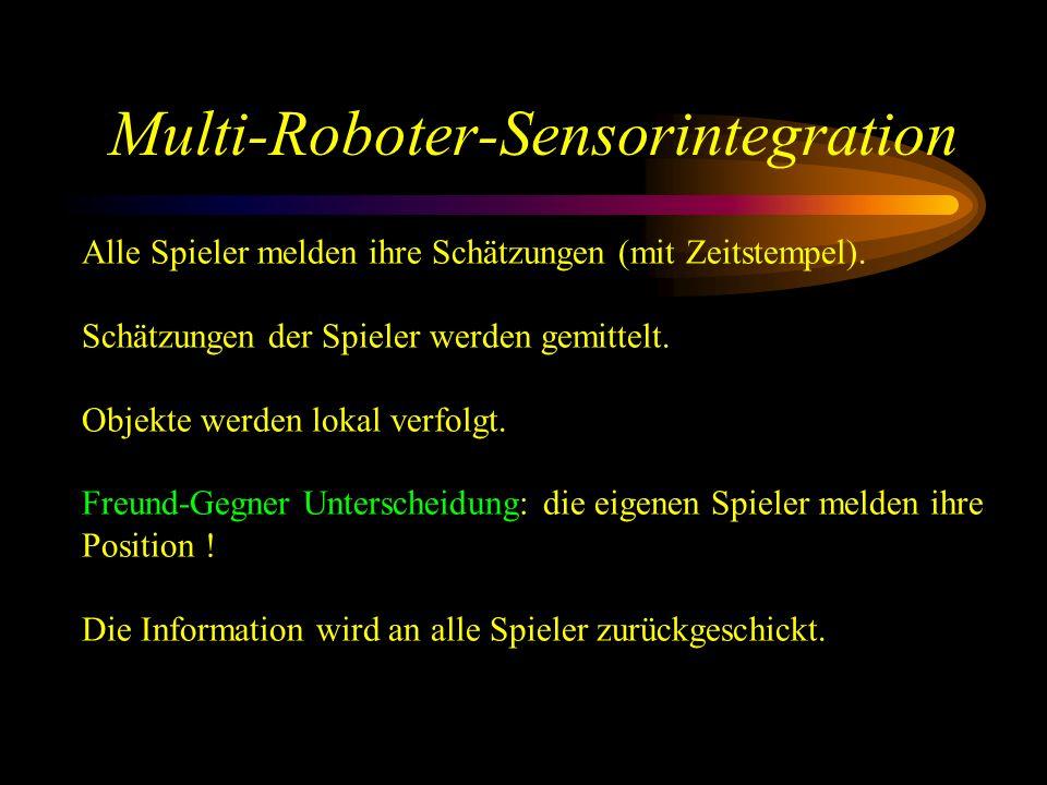 Multi-Roboter-Sensorintegration