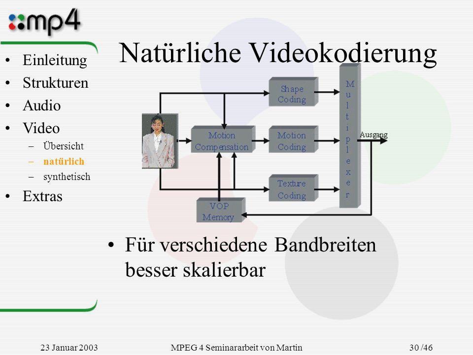 Natürliche Videokodierung