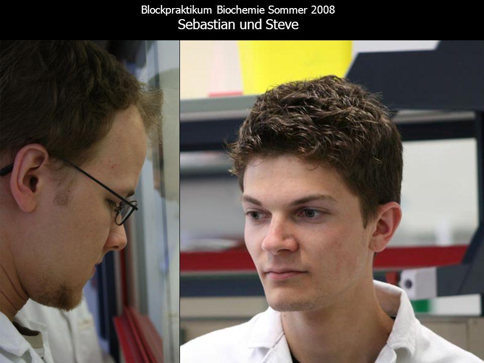 Blockpraktikum Biochemie Sommer 2008 Sebastian und Steve