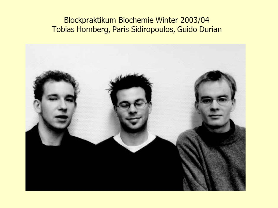 Blockpraktikum Biochemie Winter 2003/04 Tobias Homberg, Paris Sidiropoulos, Guido Durian